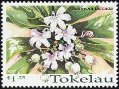 Tokelau Islands(トケラウ諸島)